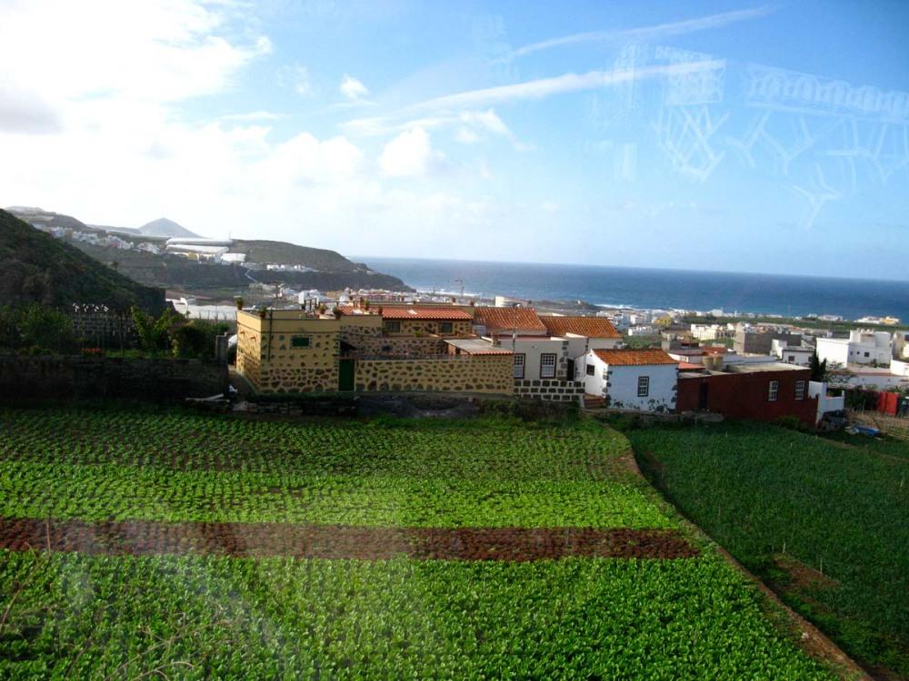 Gran Canaria (3/6)