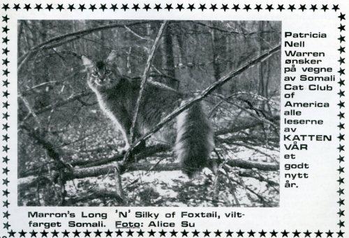 Til julenummeret i 1978 fikk vi dette bildet av en somali fra Patricia Nell Warren. Alice Su var forøvrig en svært kjent kattefotograf på den tiden.