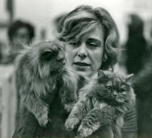 Kari Haugsdal med perserkatter på 1970-tallet.